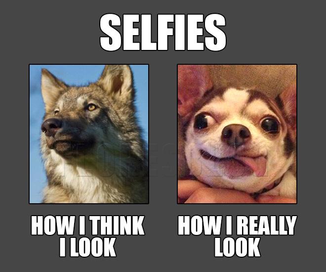 Selfies image by Rene Flores via Floresblog.wordpress.com